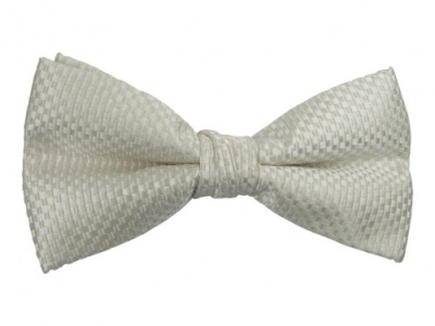 Ivory Bow Tie with Check Pattern